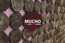 MUCHO (Museo del chocolate)