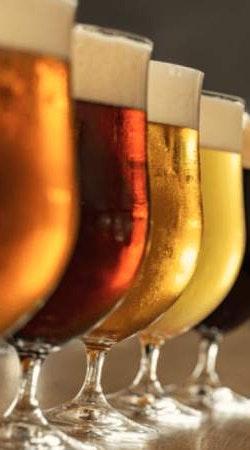Degustación en Grupo de Cerveza Artesanal