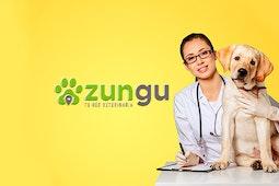 Zungu