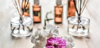 Aromas que tu hogar necesita